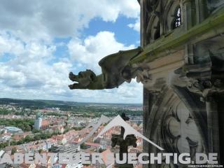 Gargoyles am Münster