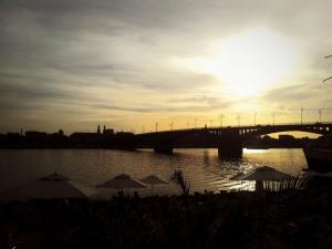 Feierabendrunde am Rhein bei perfektem Laufwetter