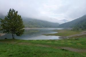 Auberge @ Lac du Wildenstein