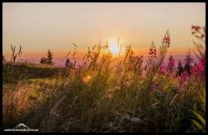 Kandel bei Sonnenuntergang