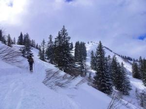 Auf dem Weg zum Gipfelanstieg des Großen Ochsenkopfes