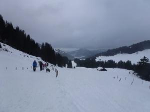 Slalom fahren auf dem Forstweg zurück ins Tal