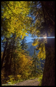 Bunter Herbstwald am Stockhorn