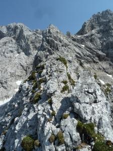 Der Gipfelgrat
