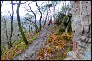 Trailrunning im Februar auf dem Rheinburgenweg