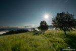 Wandern im Hochschwarzwald – über und um den Belchen